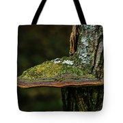Fungi 4648 Tote Bag