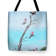 Galahs On The Lookout Tote Bag by Elaine Teague