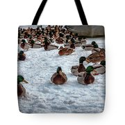 Gathering #i3 Tote Bag by Leif Sohlman