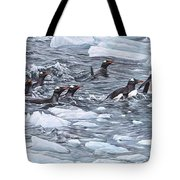 Gentoo Penguins By Alan M Hunt Tote Bag
