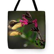 Glowing Wings Of A Hummingbird Tote Bag