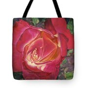 God's Grace Tote Bag