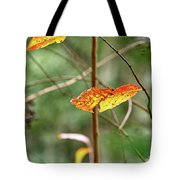 Gold Leaves And Branches Tote Bag