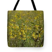 Gold Medallions Tote Bag