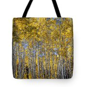 Golden Aspen Grove Tote Bag