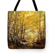 Golden Autumn Light Tote Bag