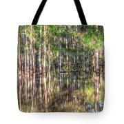 Golden Hour Serenity Tote Bag