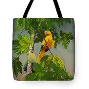 Golden Parakeet In Papaya Tree Tote Bag