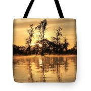 Golden Start Tote Bag