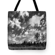 Good Harbor Shoreline Black And White Tote Bag