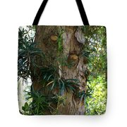 Good Things Come In Trees Tote Bag