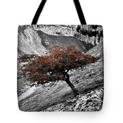 Gordale Scar Tree Tote Bag