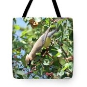 Gotta Have It Tote Bag by Sally Sperry