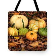Gourds Grounded Tote Bag