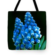 Blue Spring Tote Bag