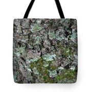 Gray Treefrog - 8522-2 Tote Bag