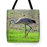 Grazing Sand Hill Crane Tote Bag