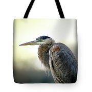 Great Blue Heron Portrait Tote Bag