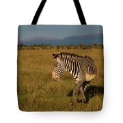 Grevy's Zebra Tote Bag by Thomas Kallmeyer