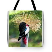 Grey Crowned Crane Gulf Shores Al Collage 2 Triptych Tote Bag