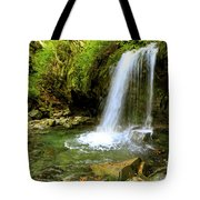Grotto Falls On Trillium Gap Trail In Smoky Mountains National Park Tote Bag