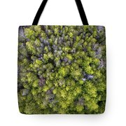 Grove Of Pines Aerial Tote Bag