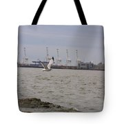 Gull In Flight On New Jersey Bay Tote Bag