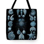 Haeckel Thalamphora Tote Bag