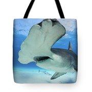 Hammerhead Shark Tote Bag