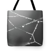 Hanging On The Web Tote Bag