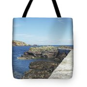 harbour wall and cliffs at St. Abbs, Berwickshire Tote Bag