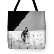 Hear, Speak And See Tote Bag