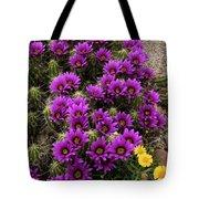 Hedgehog Cactus And Yellow Daisies Tote Bag