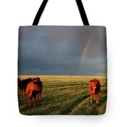 Heifers And Rainbow Tote Bag by Rob Graham