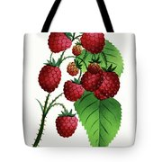 Hepstine Raspberries Hanging From A Branch Tote Bag