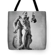 Hercules And The Bird With Extended Claws Tote Bag by Mary Lee Dereske