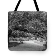 Hermann Park Black And White Tote Bag by Dan Sproul