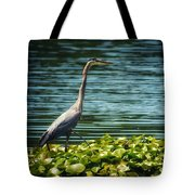 Heron In The Lily Pads Tote Bag
