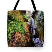 Hidden Falls Sombrio Beach 2 Tote Bag