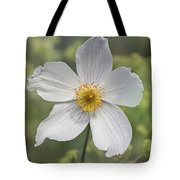 Himalayan Blue Poppy In White By Tl Wilson Photography Tote Bag by Teresa Wilson