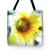 Honey Bees On Sunflower Tote Bag by Ola Allen
