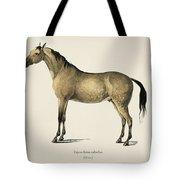 Horse  Equus Ferus Caballus  Illustrated By Charles Dessalines D' Orbigny  1806-1876  Tote Bag