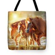 Horse Family Walking In Lake At Sunrise Tote Bag