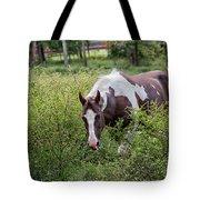 Horse Print 578 Tote Bag
