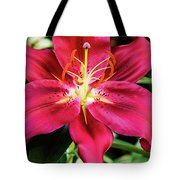 Hot Pink Day Lily Tote Bag