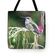 Hummingbird 105 Tote Bag