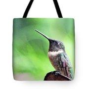 Hummingbird 90 Tote Bag