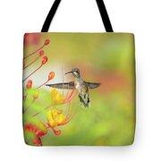 Hummingbird And Pride Of Barbados  Tote Bag