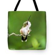 Hummingbird Flexibility Tote Bag