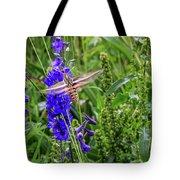 Hummingbird Moth And Larkspur Tote Bag by Dawn Richards